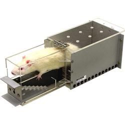 ラット用階段型運動能力測定装置